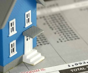 VAT on land and rental of immovable property